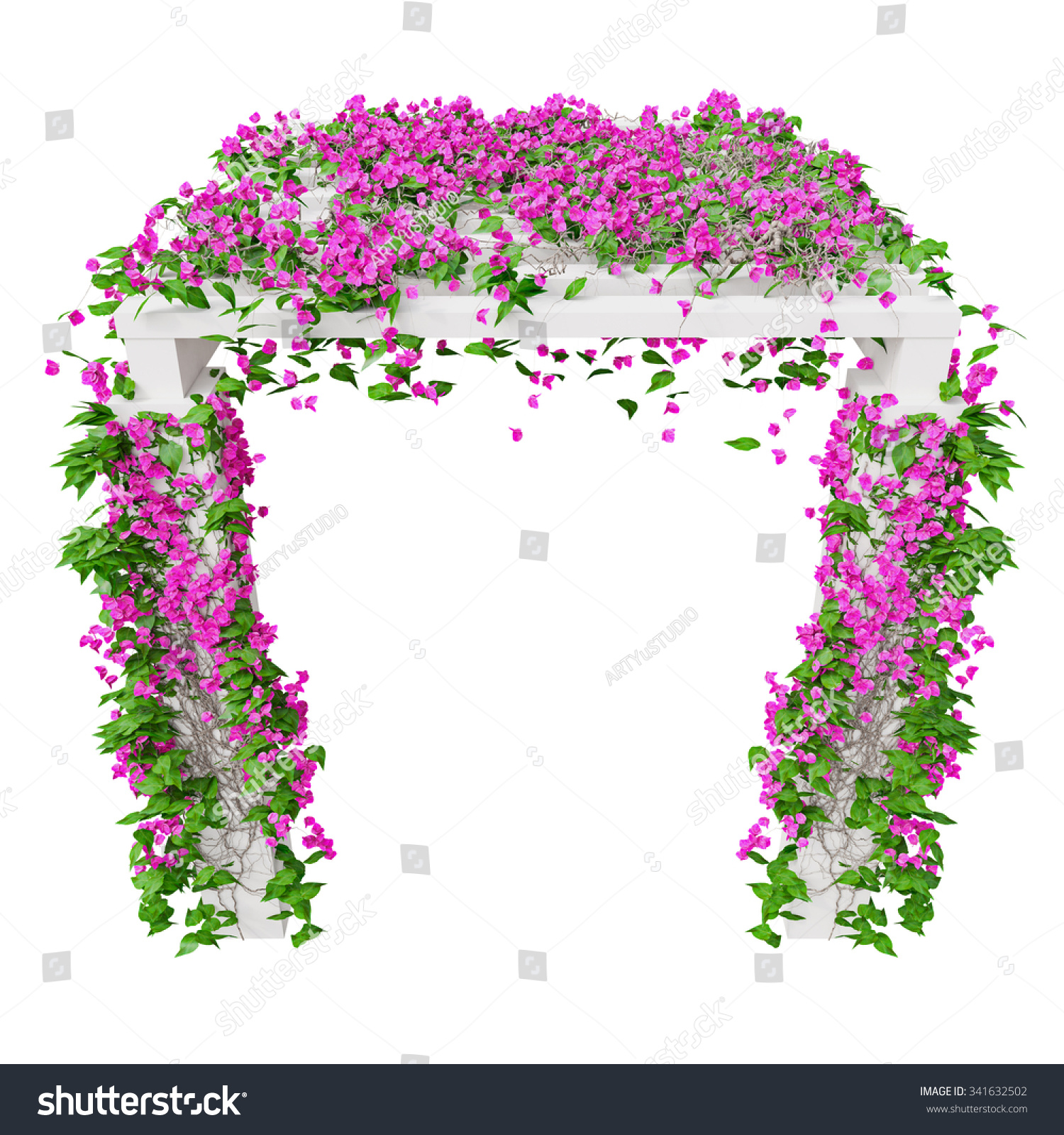 Pink Climbing Flowers Bougainvillea 3 D Graphic Stock Illustration