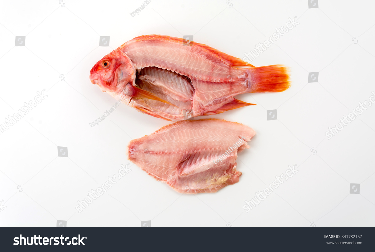 tilapia raw on white background #341782157