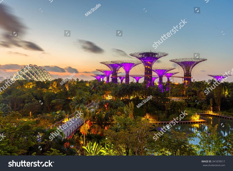 SINGAPOREJUNE 282015 Night View Super Tree Stock Photo (Edit Now ...