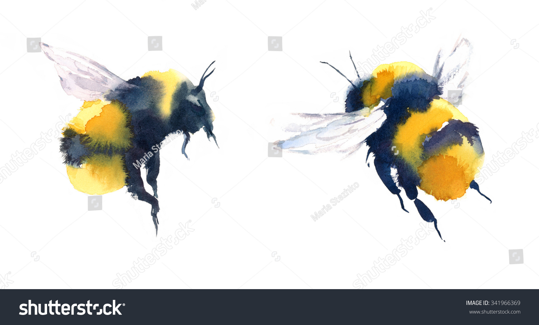 watercolor bumblebees flight hand painted summer stock