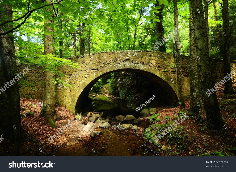 The Woods Stream Deutsch