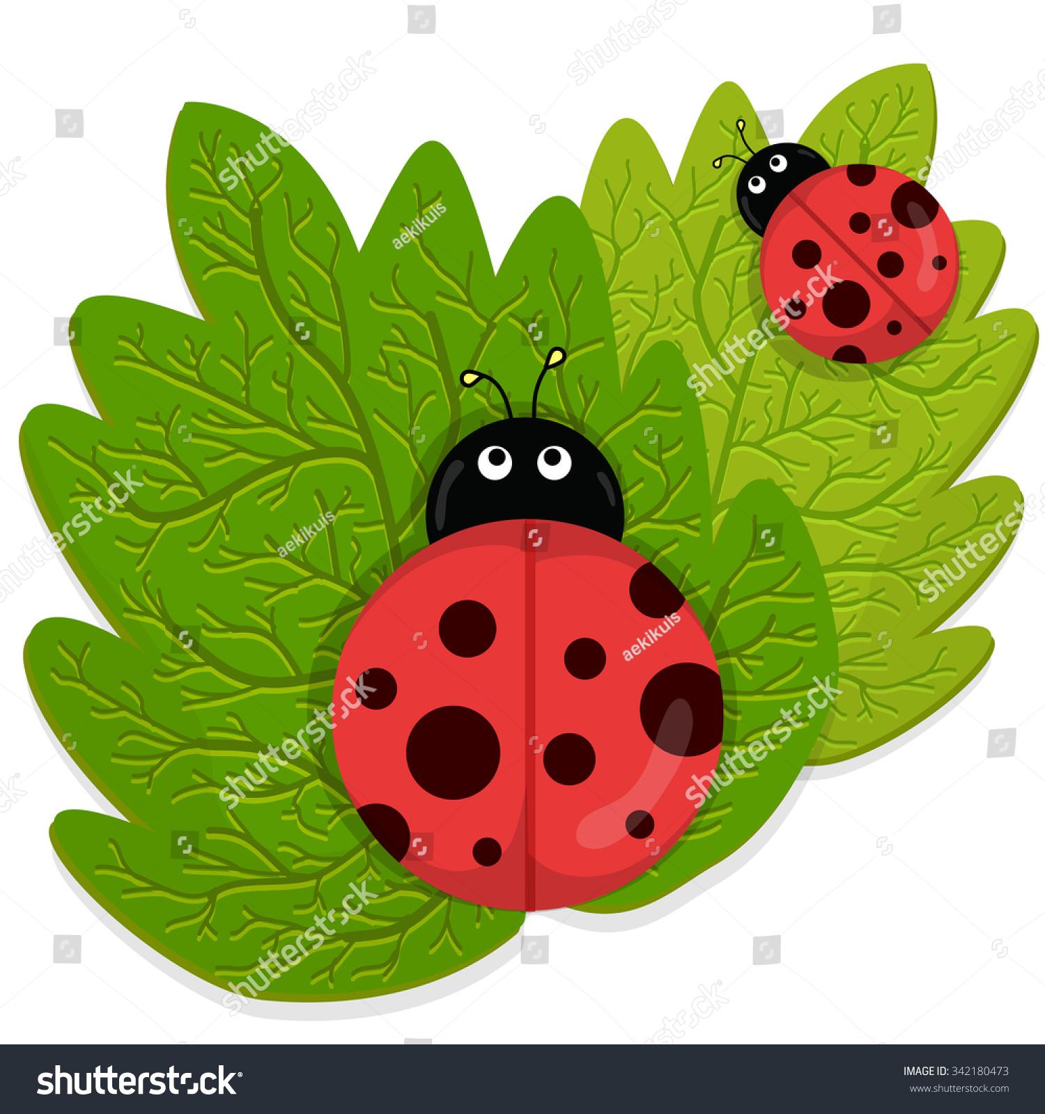 Ladybug On Green Leaf Stock Vector 342180473 - Shutterstock for Clipart Ladybug On Leaf  117dqh