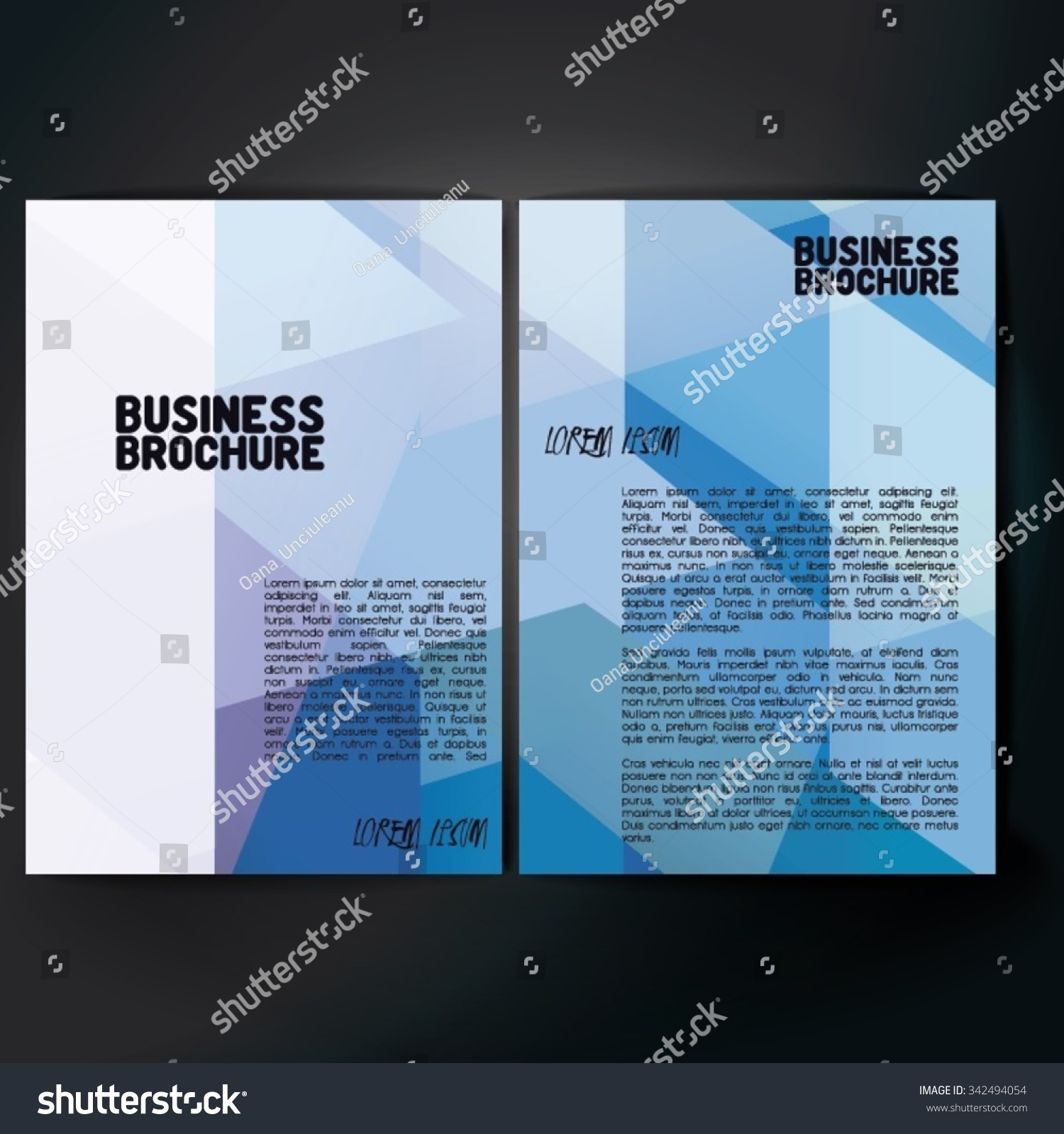 Vector brochure template design a4 size stock vector for Brochure size template