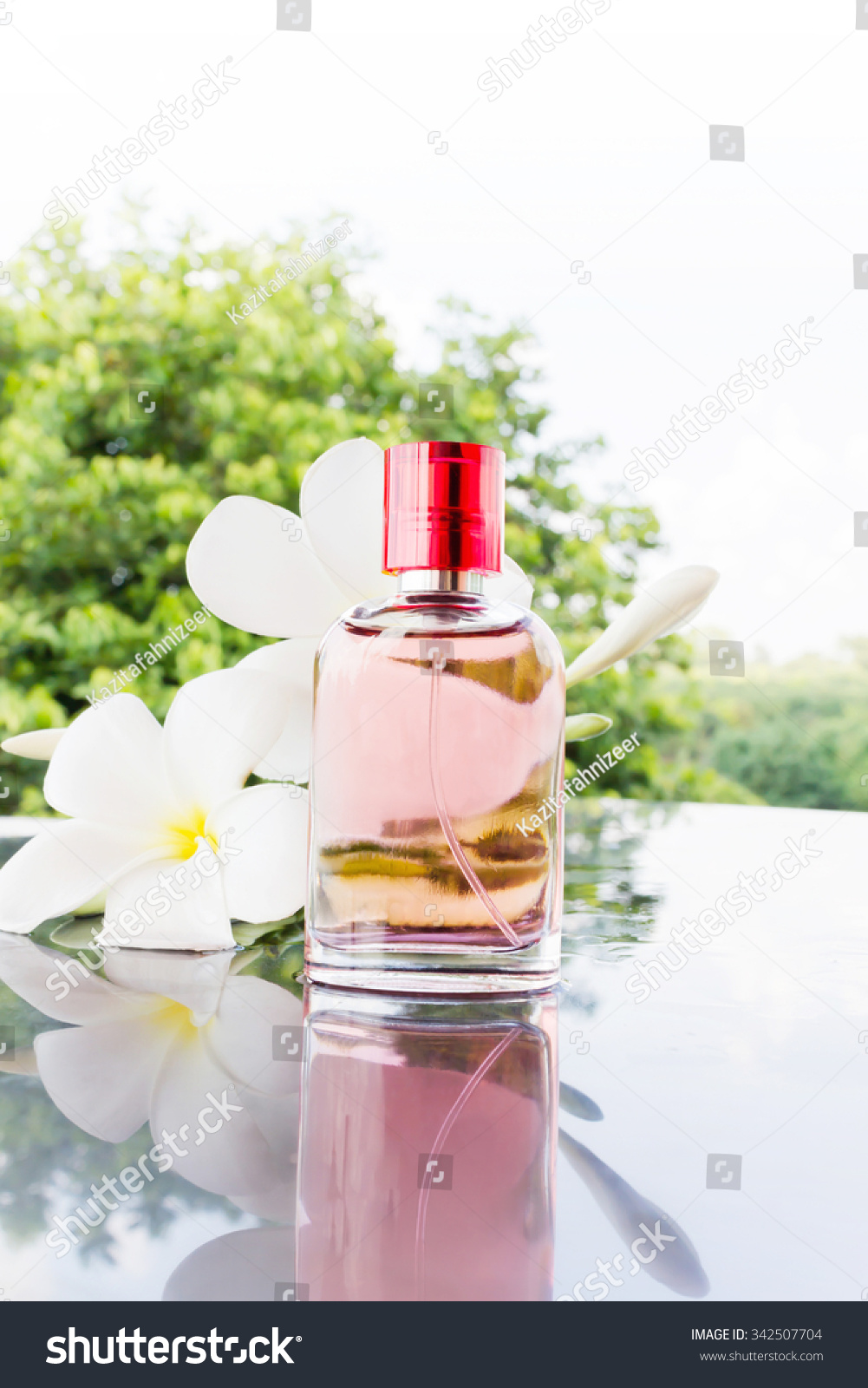 Single Bottle Sweet Pink Fragrant Perfume Stock Photo Edit Now