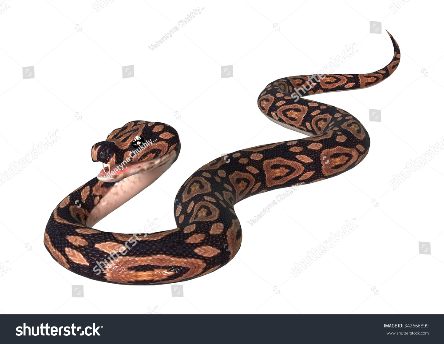 3 D Digital Render Ball Python Snake Stock Illustration 342666899 ...