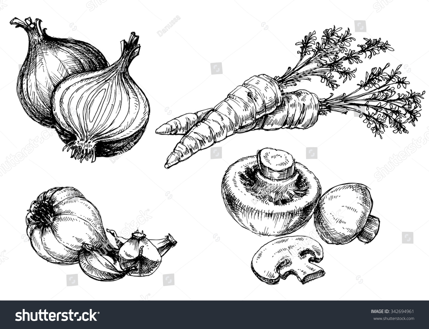 vegetables collection hand drawn vintage style stock vector