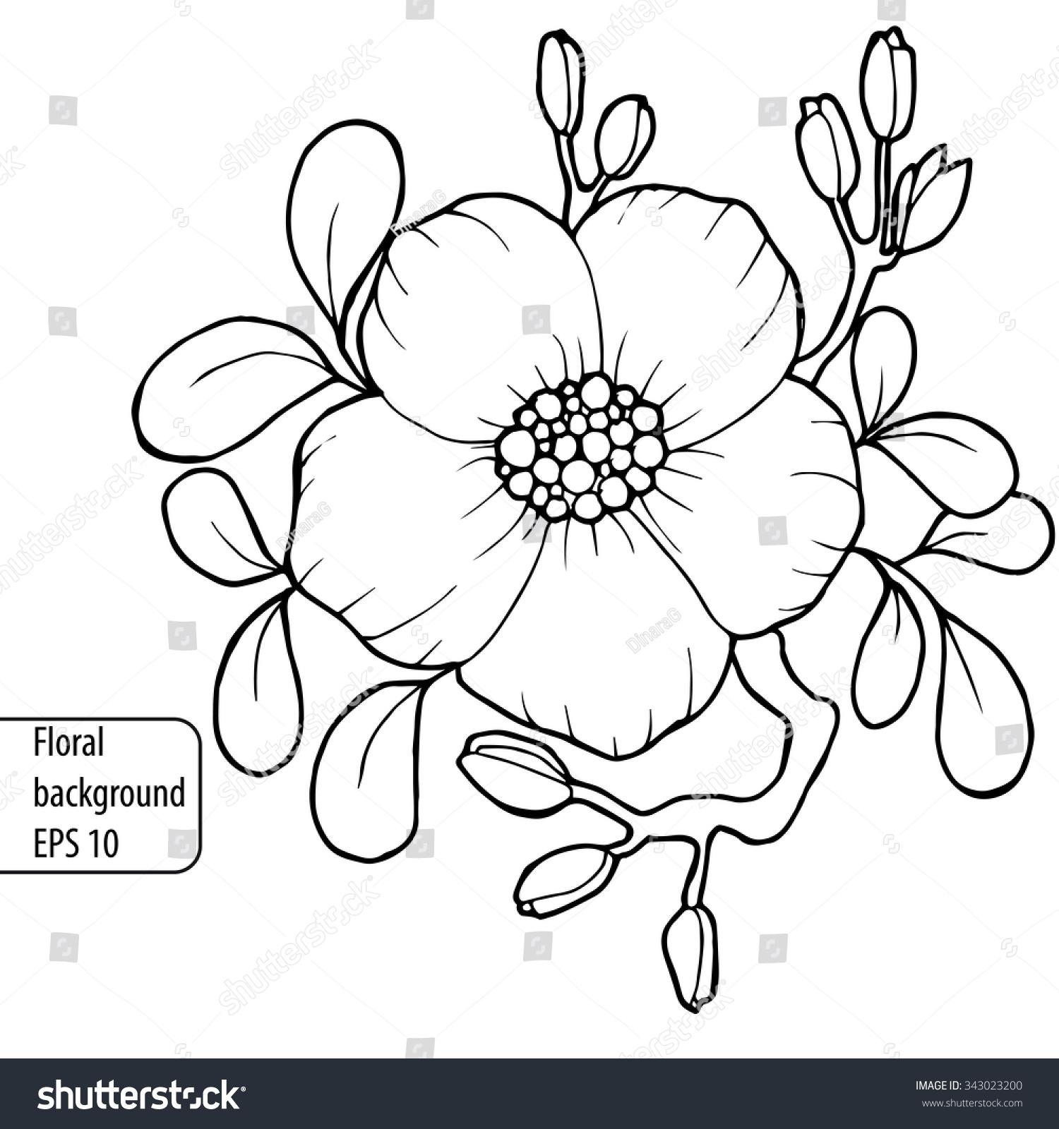 Vintage Handdrawn Black White Background Flowers Stock Vector
