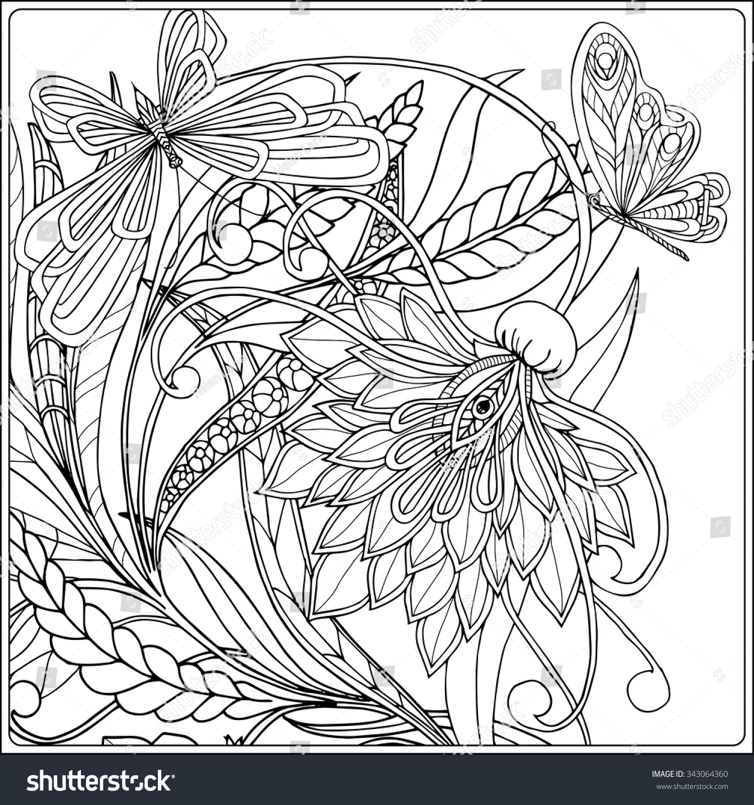 coloring book adult older children coloring stock vector