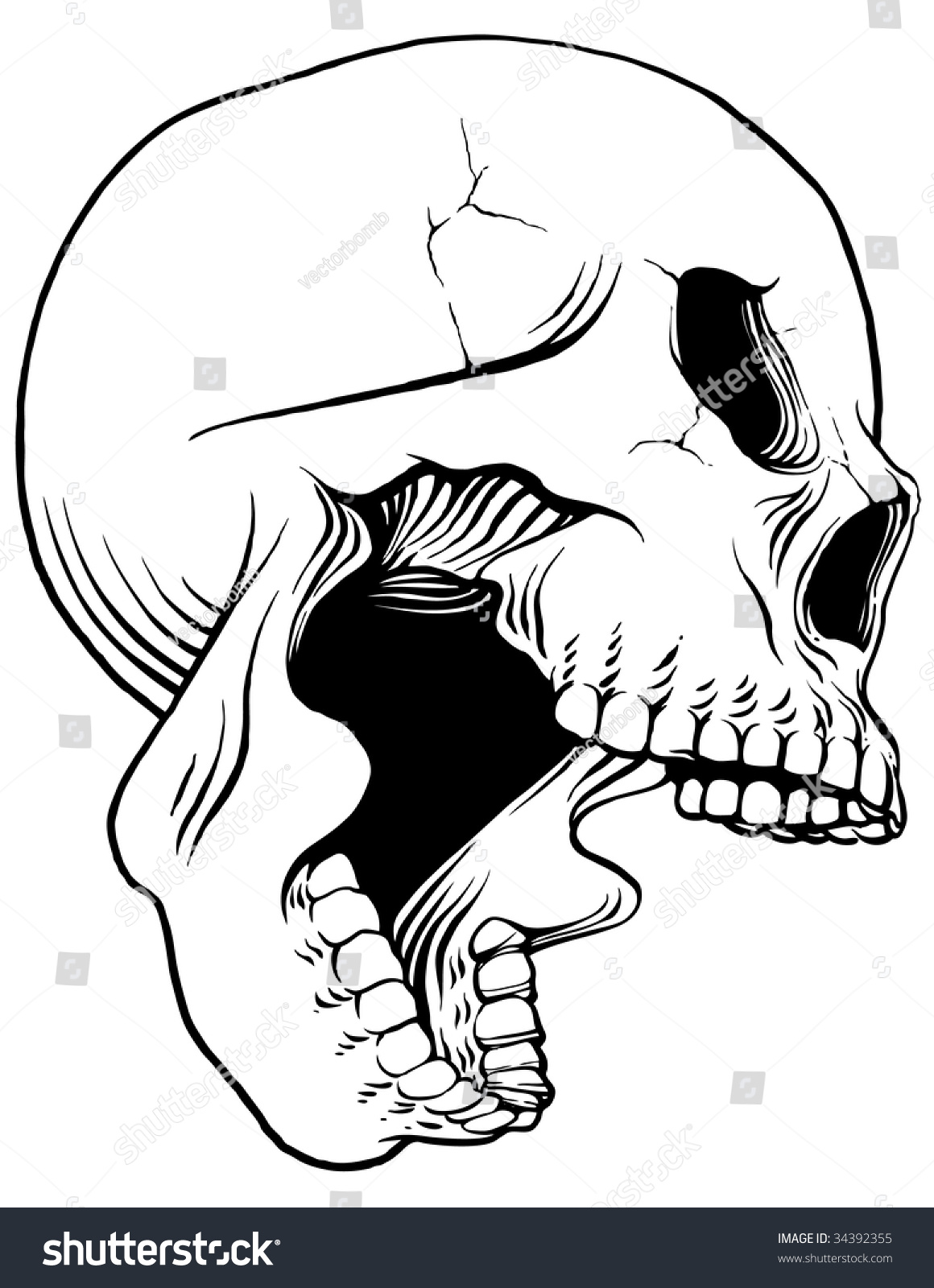 It is an image of Gutsy Side View Open Mouth Drawing