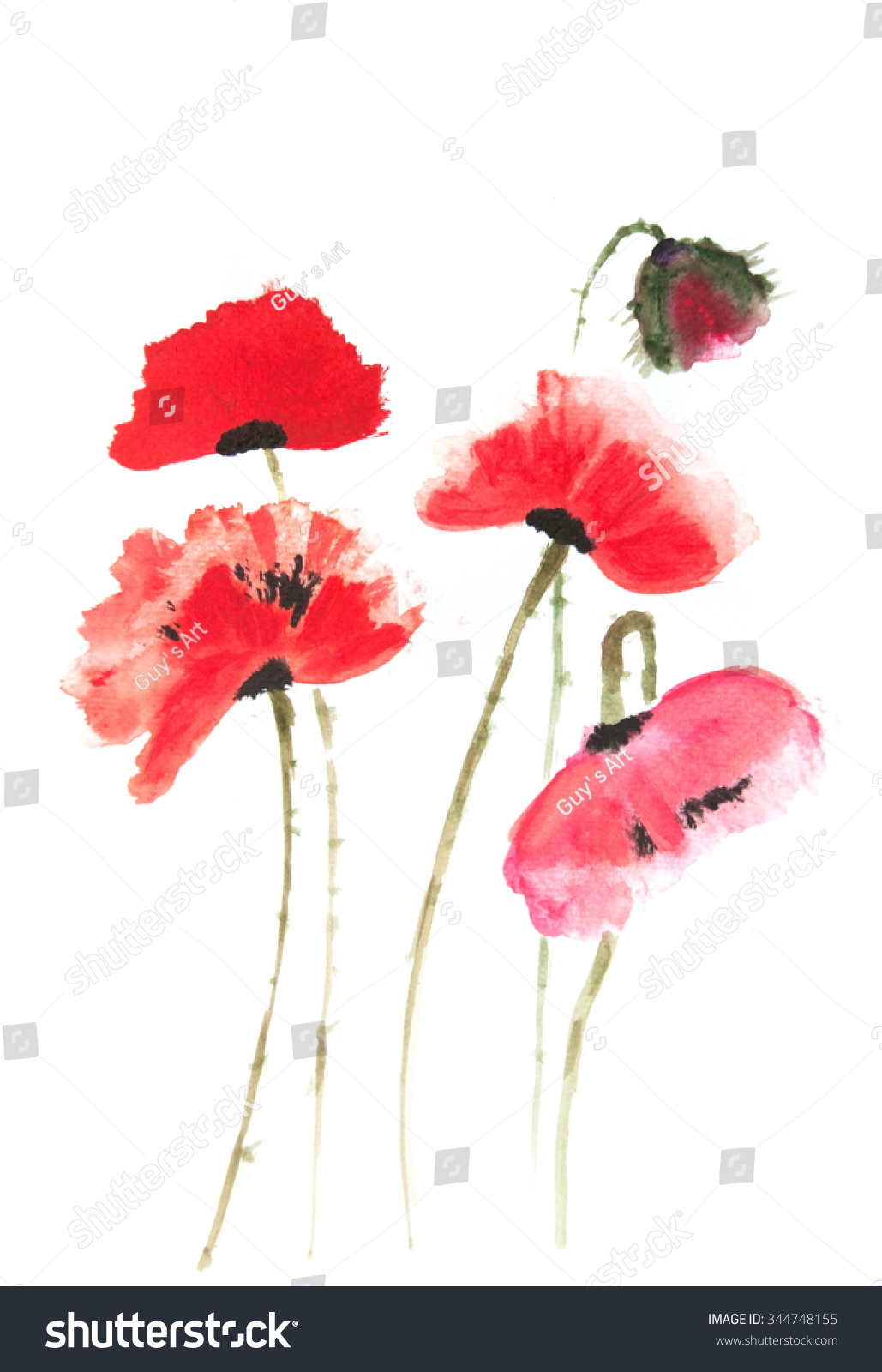 Red poppy flowers on white, Acrylic color painting   EZ Canvas