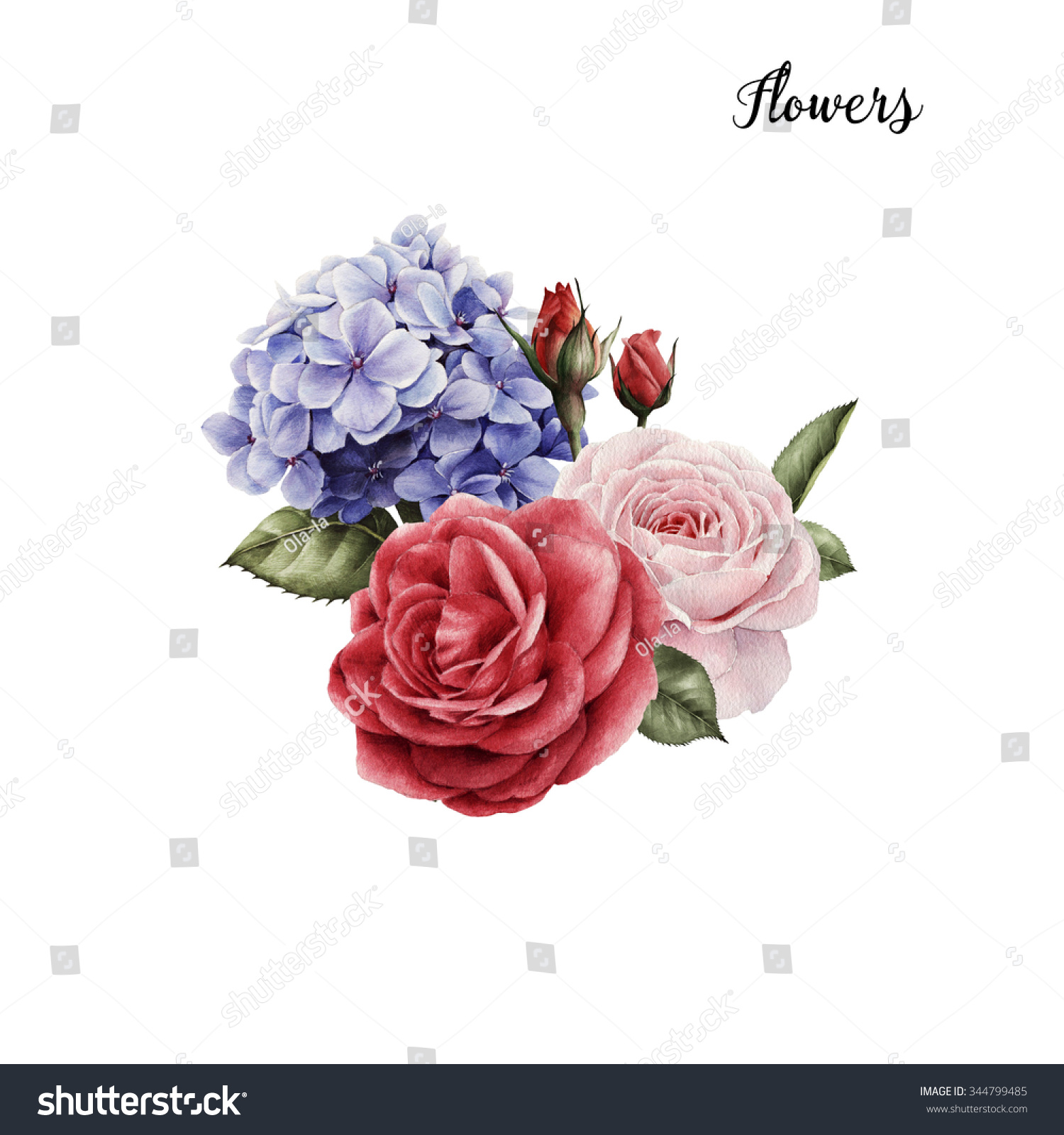 Bouquet Roses Watercolor Can Be Used Stock Illustration 344799485 ...