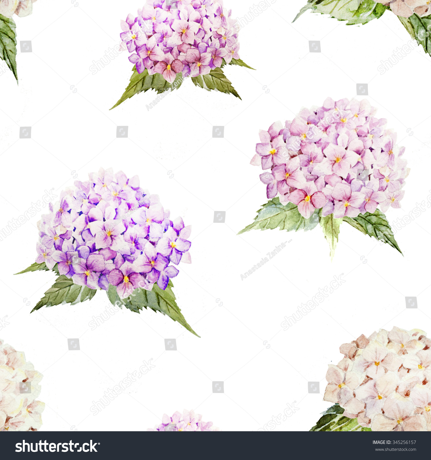 Watercolor Hydrangea Pattern Vintage Pink Flowers Stock Illustration