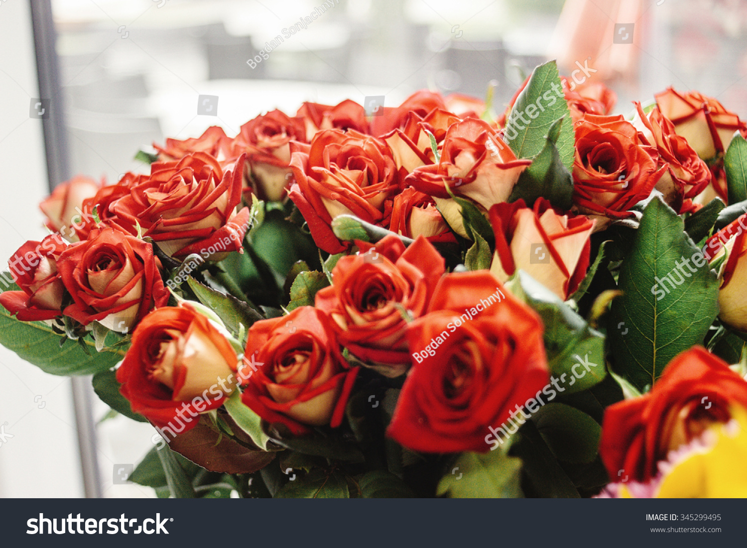 Stylish Gorgeous Flower Bouquets Red Roses Stock Photo Edit Now