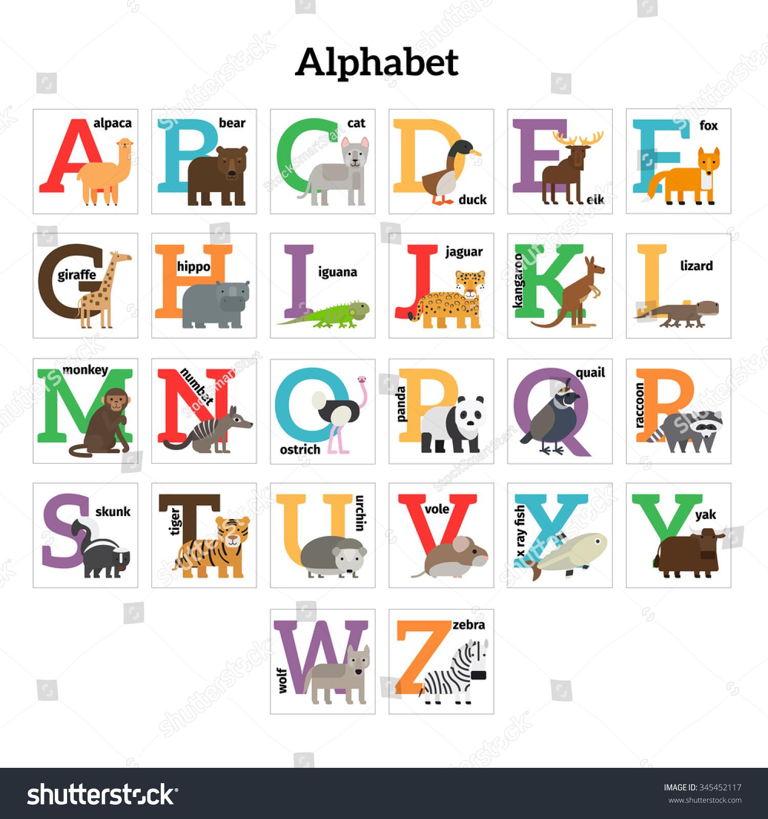 Alphabet preschool - English Animals Zoo Alphabet Preschool Kids Education Vector Illustration
