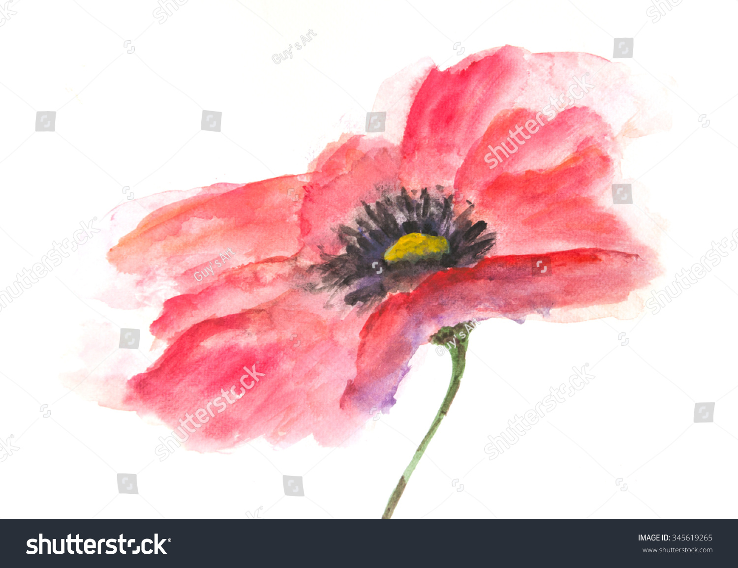 Red Beautiful Poppy Flower Acrylic Painting Stock Illustration