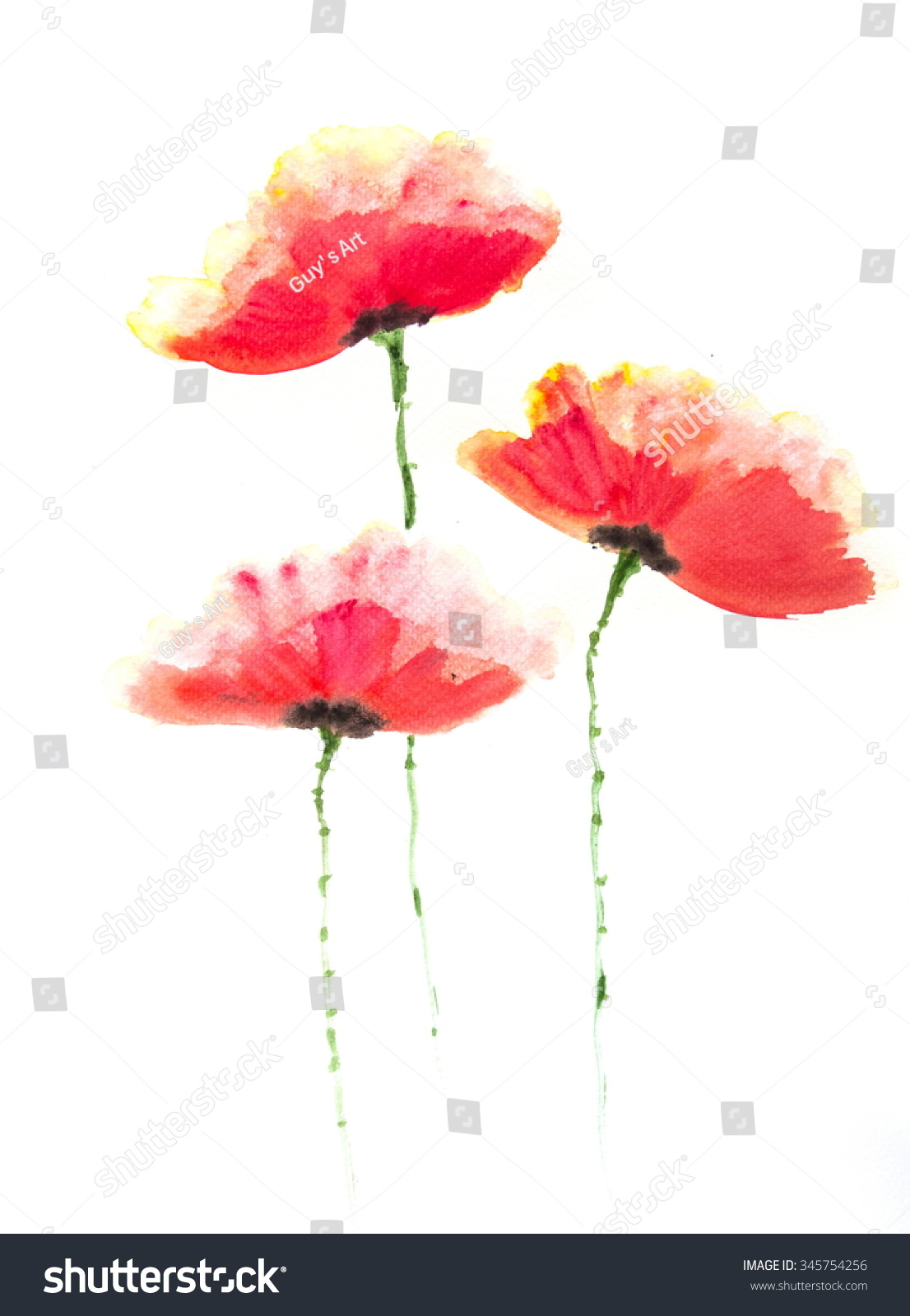 Red Poppy Flowers On White Acrylic Color Painting Ez Canvas