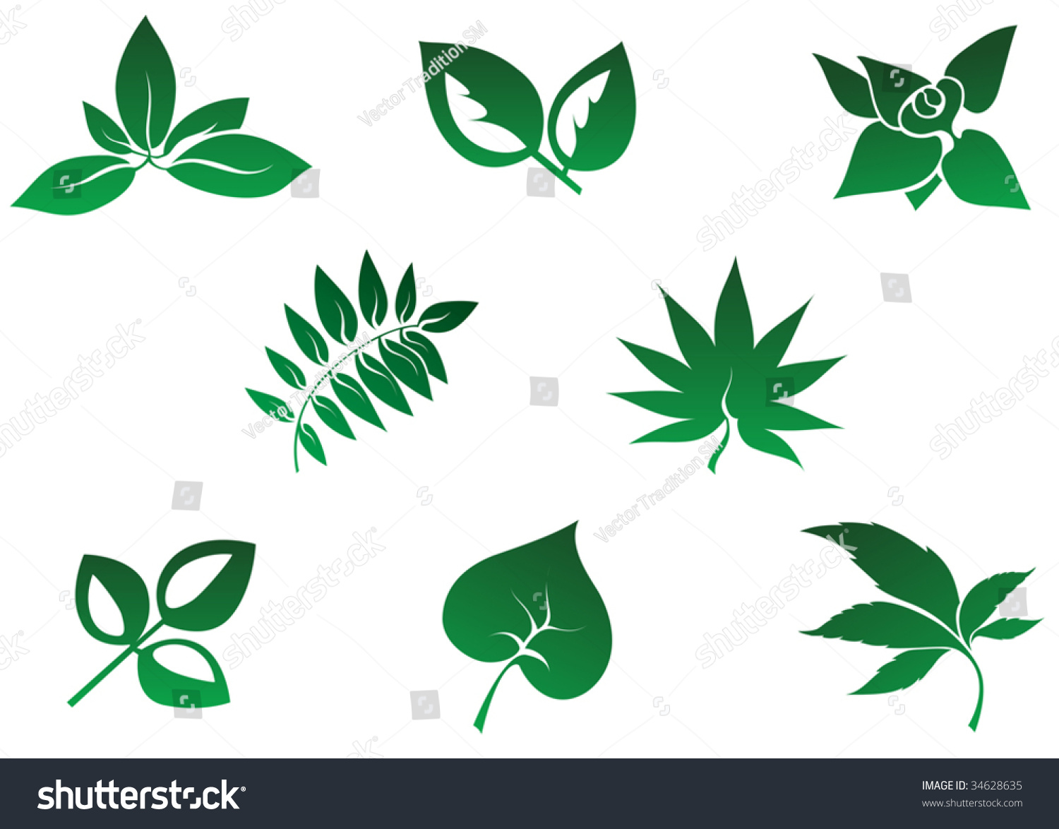 template of leaf eliolera com
