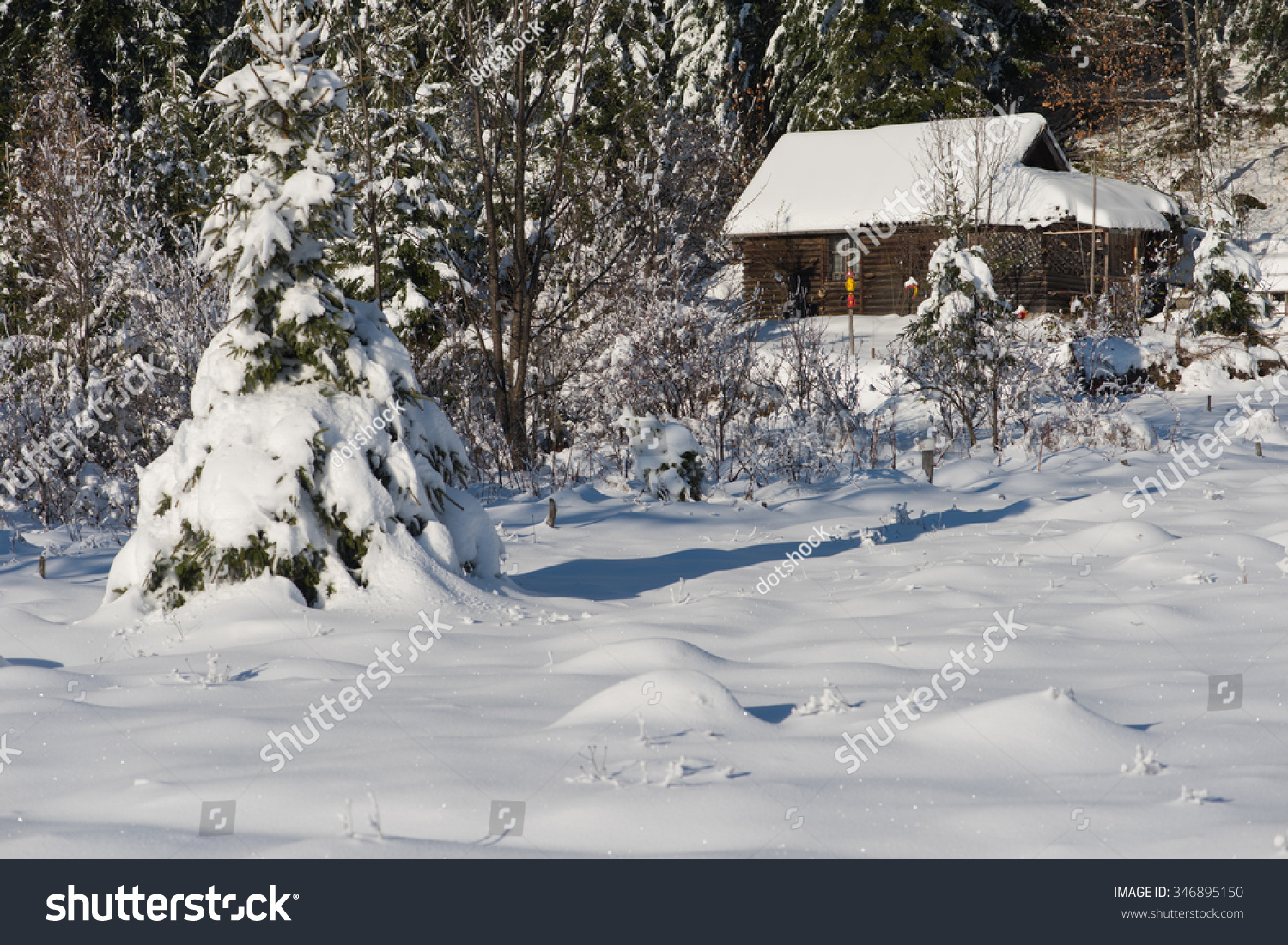 Mountain house near pine tree forest small cabin covered with fresh snow in wild nature at - Mountain cabin plans close to nature ...