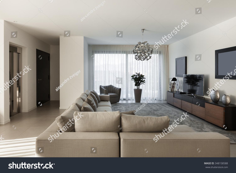 Interior Modern Apartment Comfortable Living Room Stock Photo 348158588 Shutterstock
