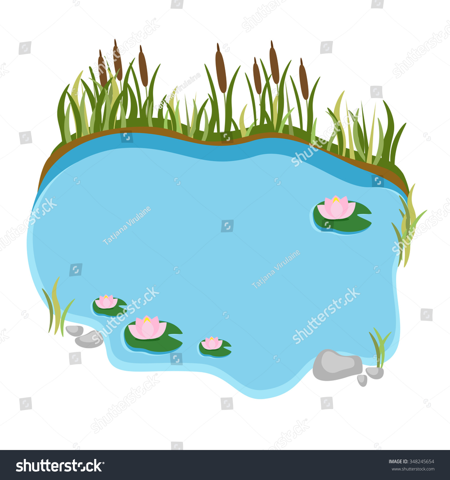 Swamp Water Lilies Reeds Vector Illustration Stock Vector Royalty Free 348245654