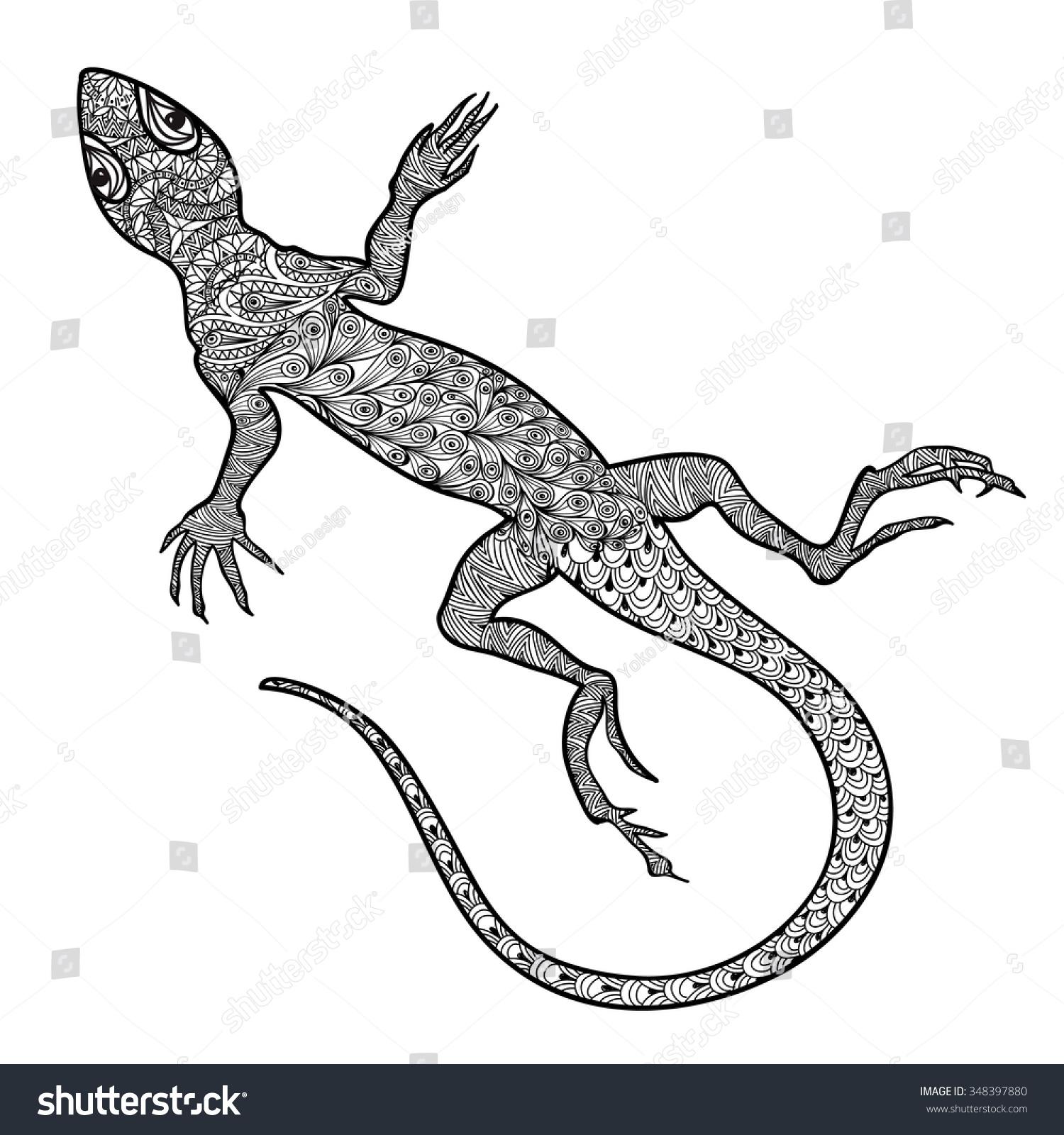 Lizard Reptile Isolated Patterned Ornamental Salamander Stock ...
