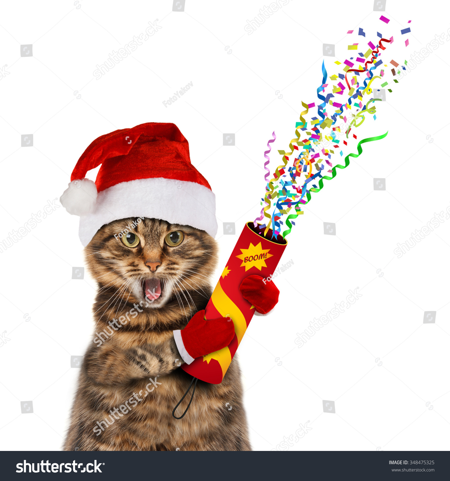 Funny Cat Christmas Hat Petard Stock Photo (Edit Now) 348475325