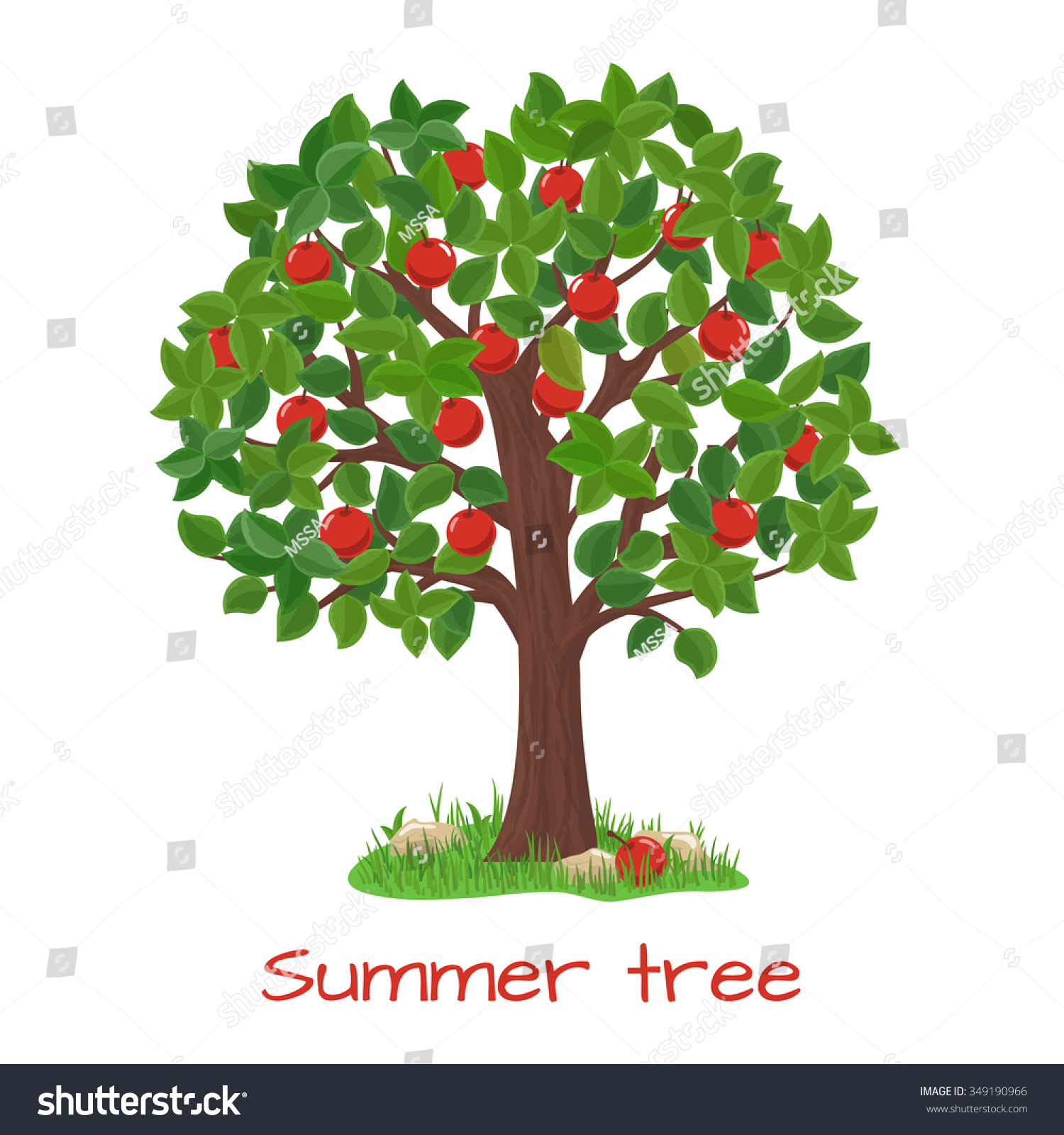 Green Apple Tree. Summer Tree. Nature Garden, Harvest And ...