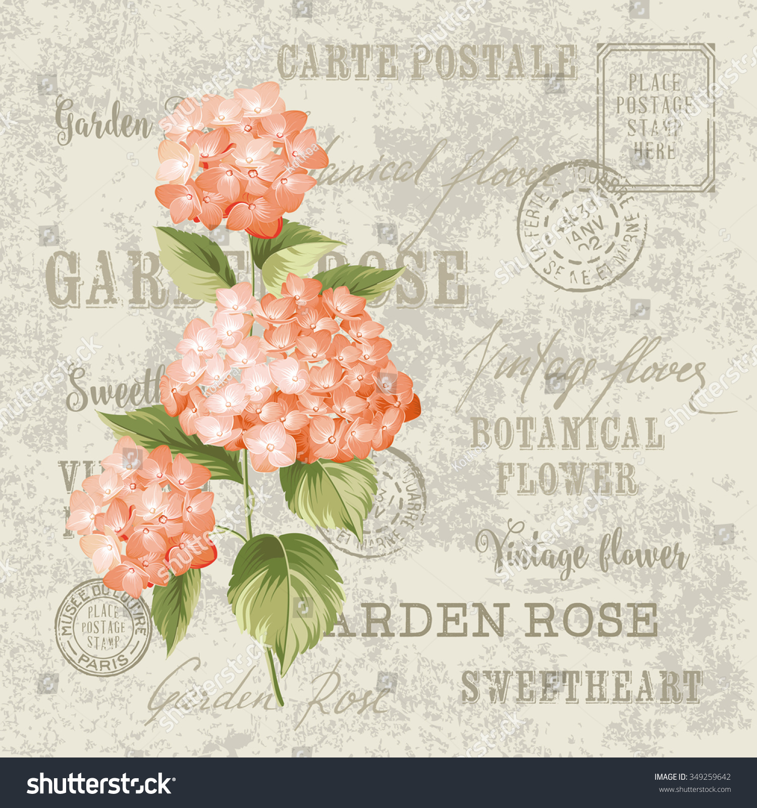 Red flowers design for invitation card template Vintage postcard background vector template for wedding invitation Label with hortensia flowers Vector illustration