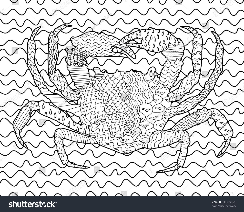 sea crab high details antistress stock vector 349389104