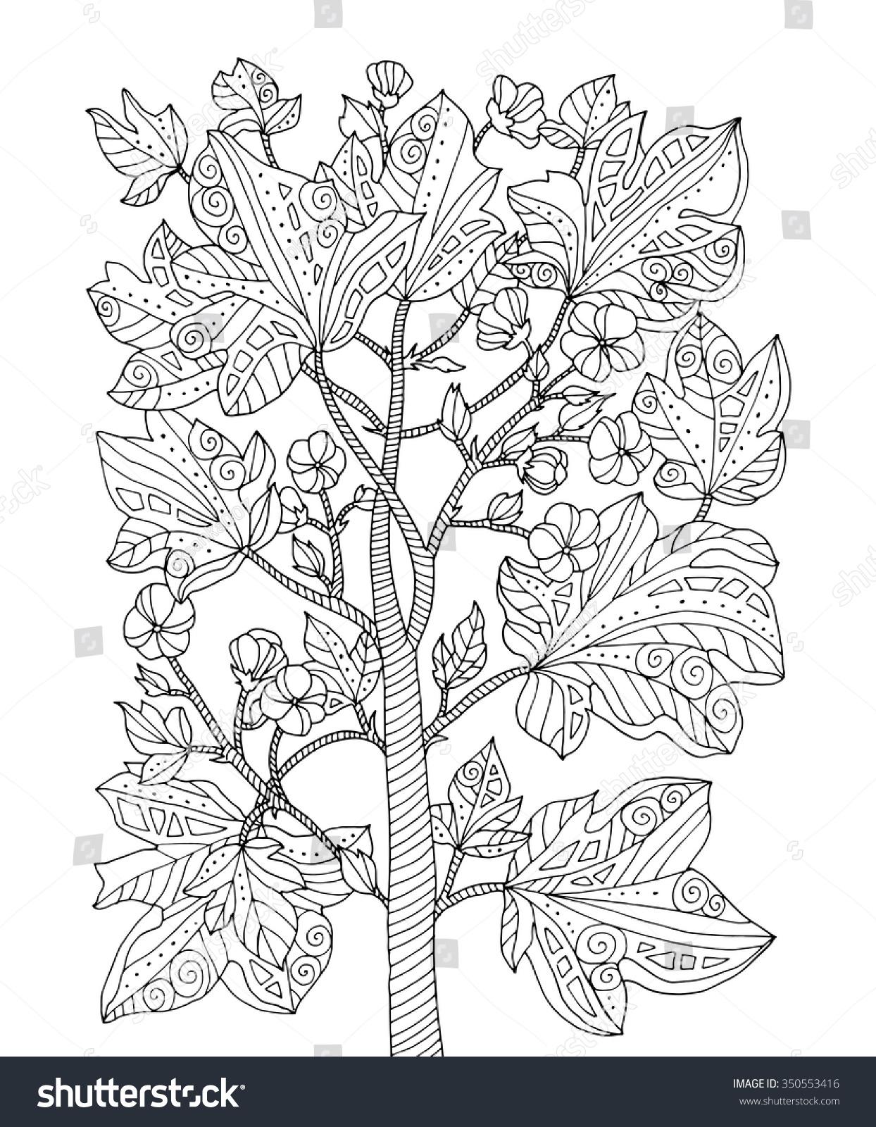 Rainforest plants coloring pages