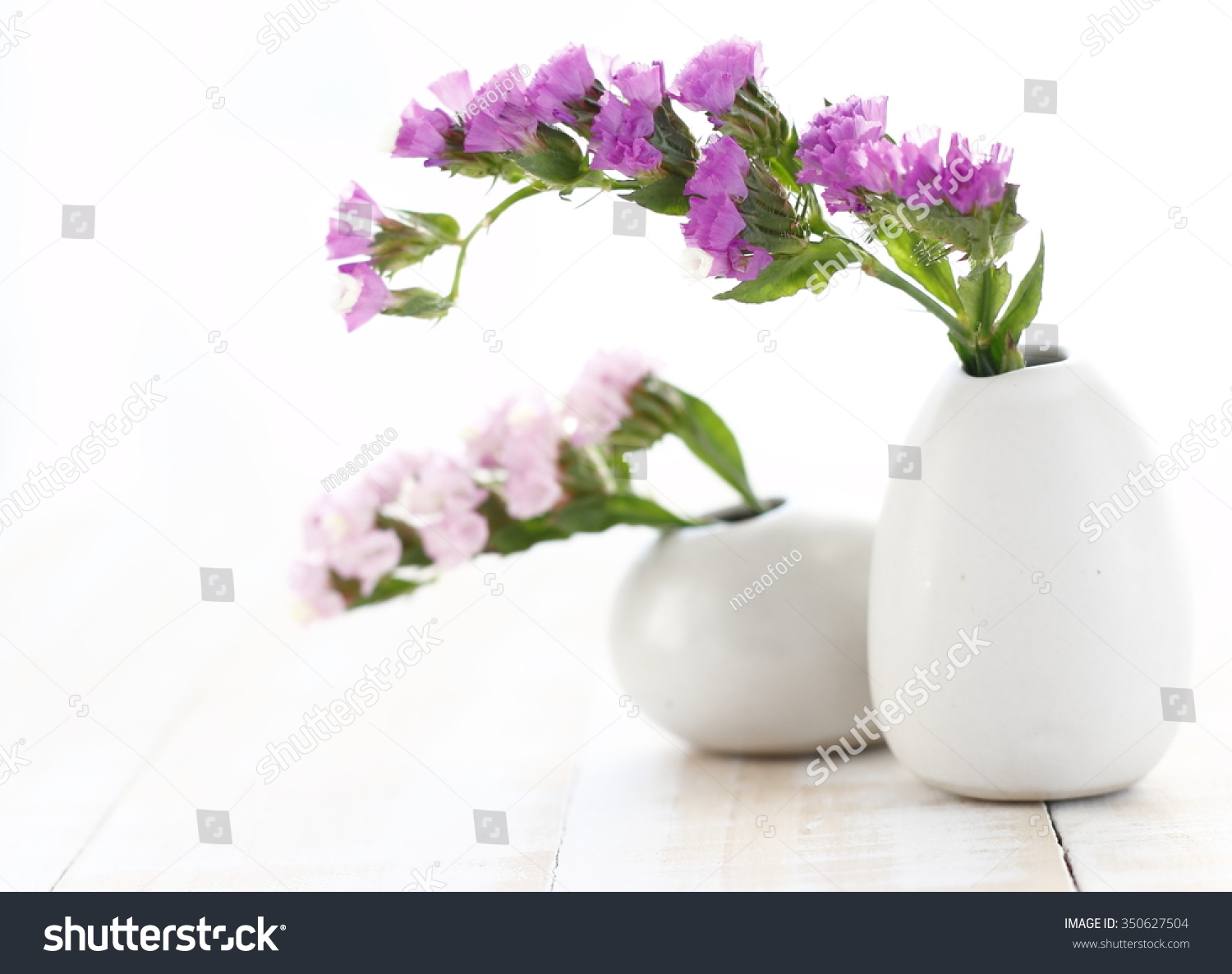 Pink Statice Flower White Vase On Stock Photo Edit Now 350627504