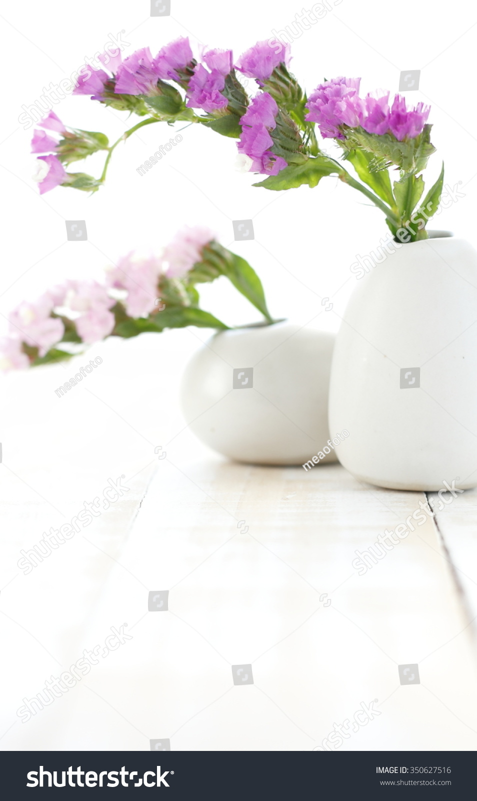 Pink Statice Flower White Vase On Stock Photo Edit Now 350627516