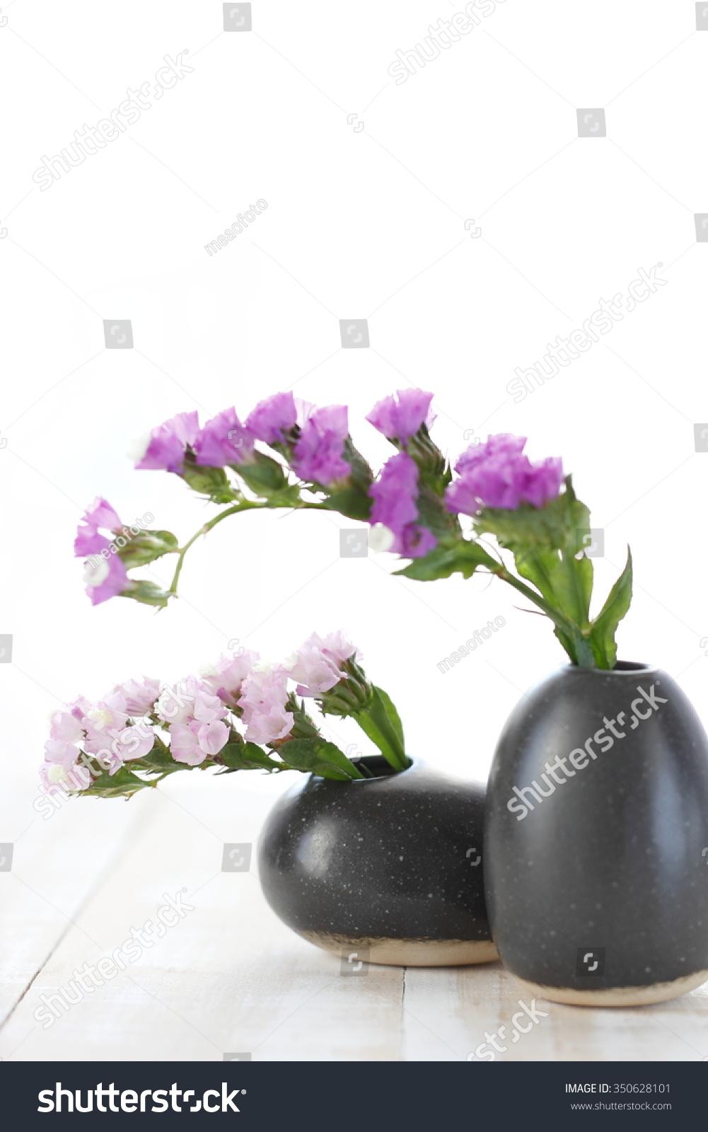 Pink Statice Flower Black Vase On Stock Photo Edit Now 350628101