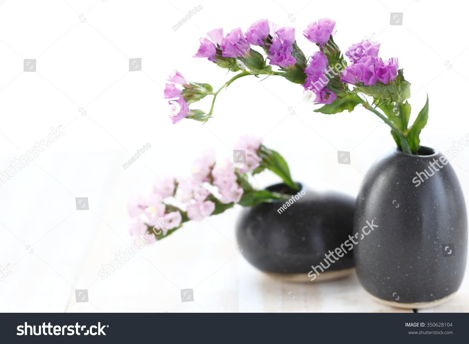 Pink Statice Flower Black Vase On Stock Photo Edit Now 350628104