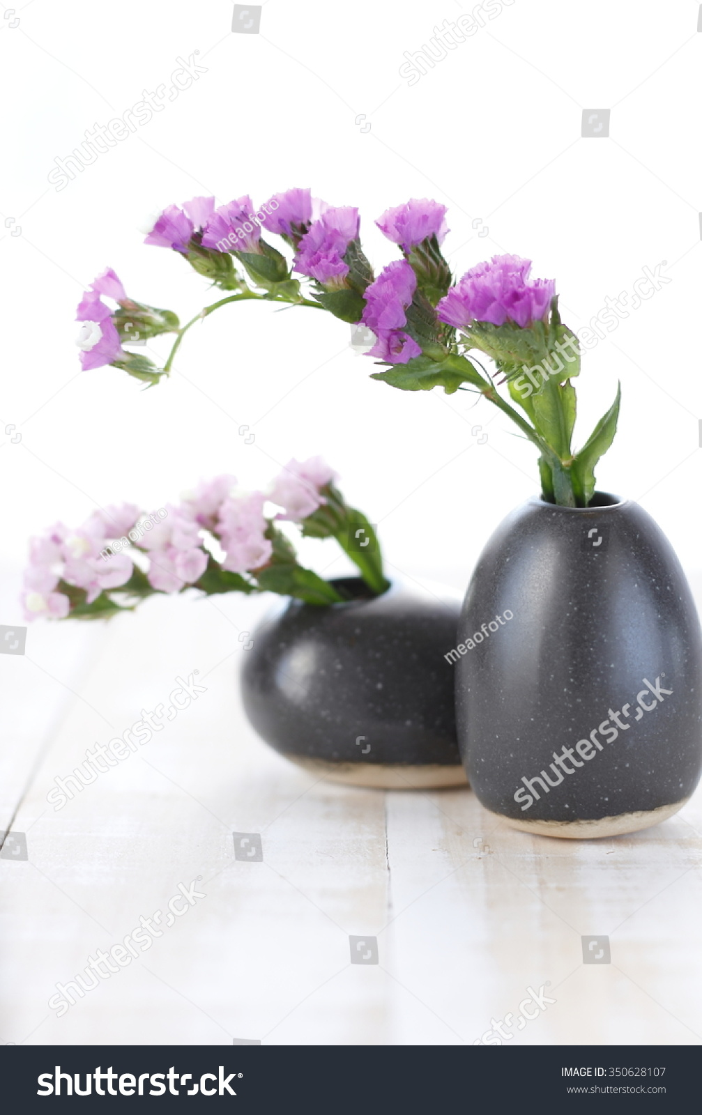 Royalty Free Pink Statice Flower In Black Vase On 350628107 Stock