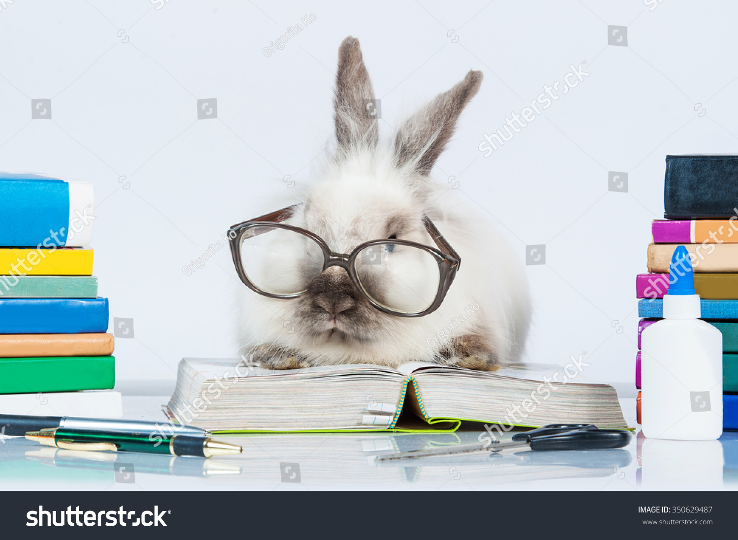 Image result for accountant easter