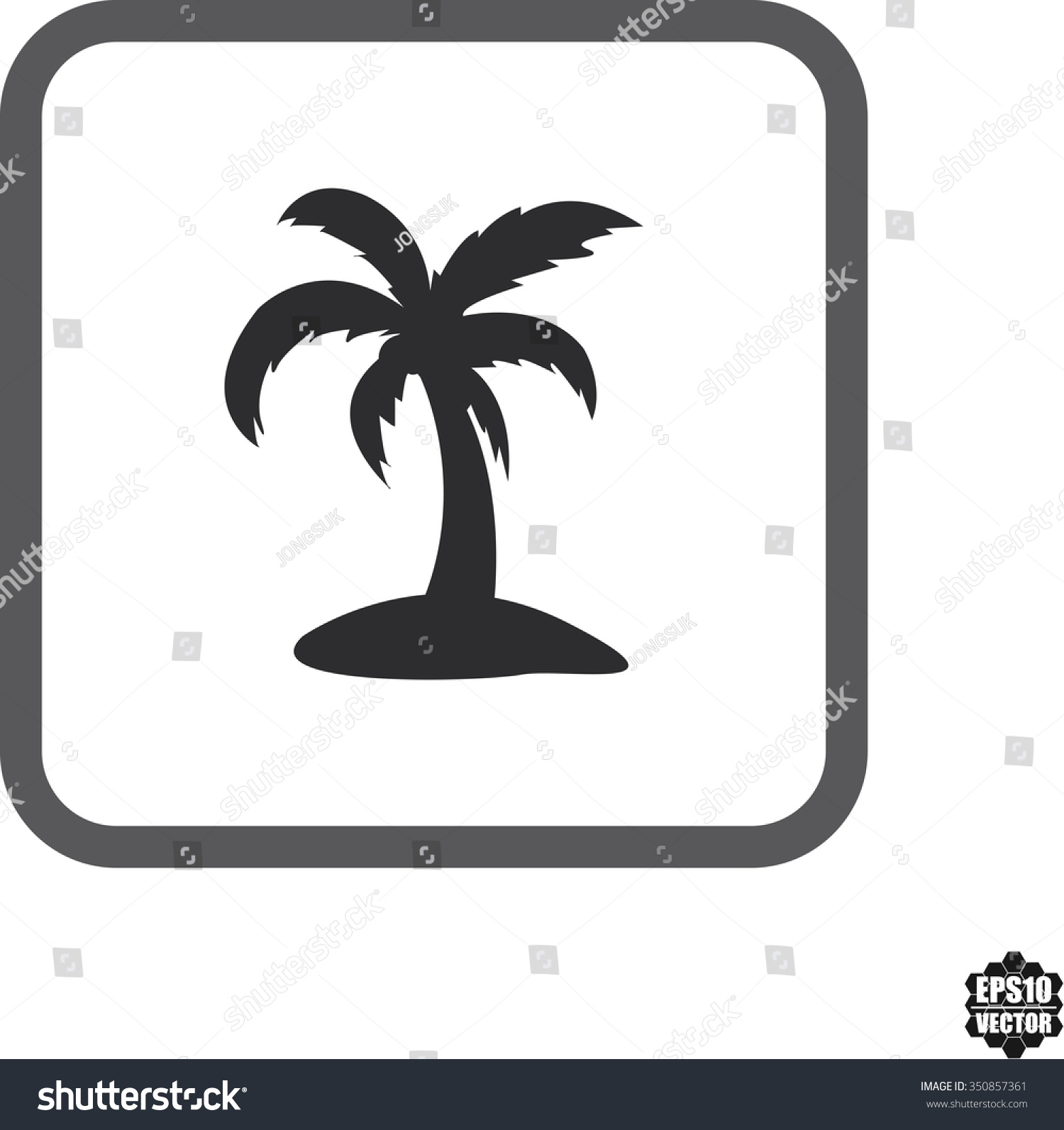 Coconut Tree Symbol Icons On White Stock Vector Royalty Free