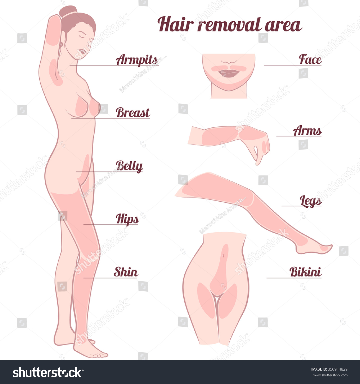 Area Hair Removal Naked Girl Full   350914829 -5480