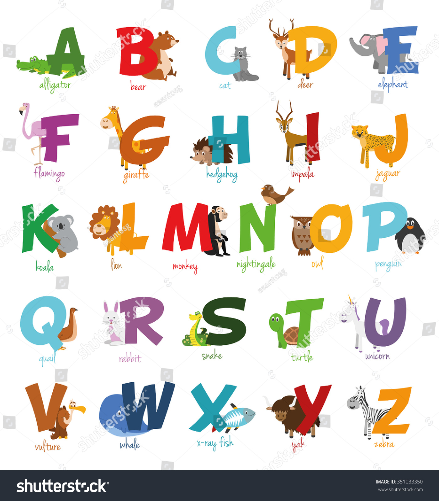 Zoo Animals That Start With The Letter T