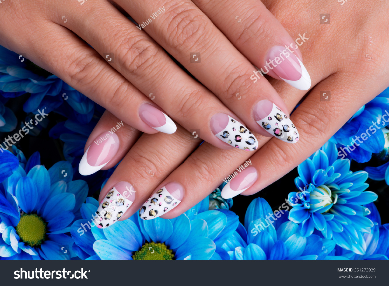 Beautiful Womans Nails Beautiful French Manicure Stock Photo (100 ...