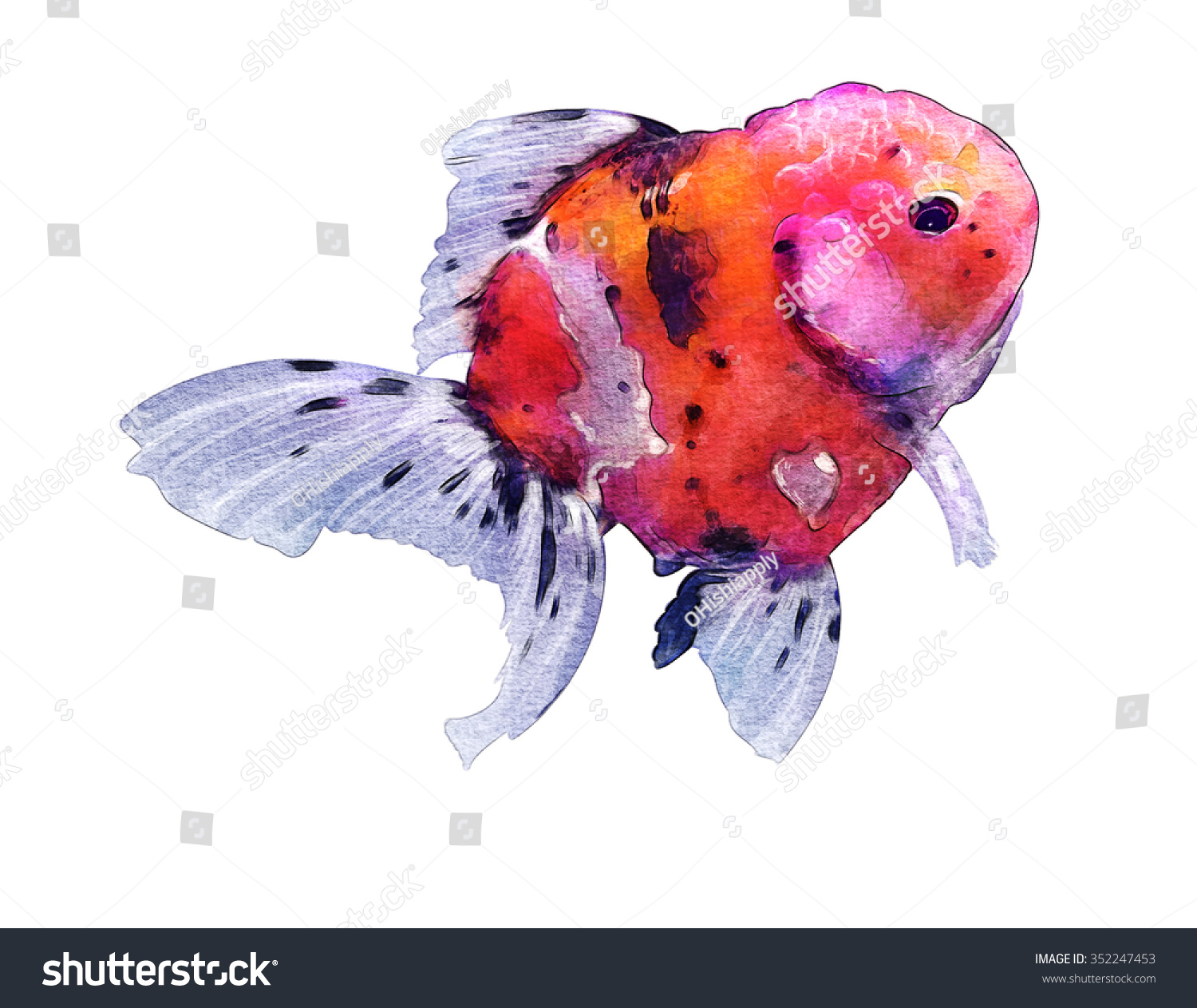 Fantastic Color Of Fish Festooning - Drawing Coloring - androidharga ...