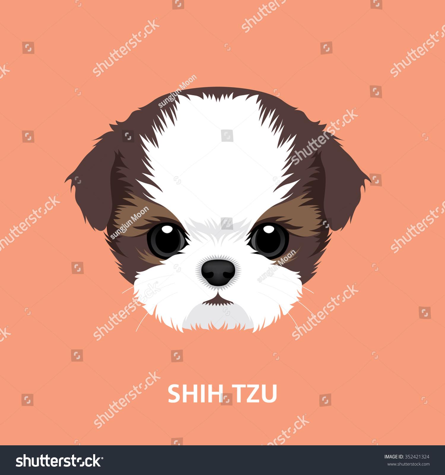 Vector Illustration Portrait Shihtzu Puppy Art Stock Vector Royalty Free 352421324