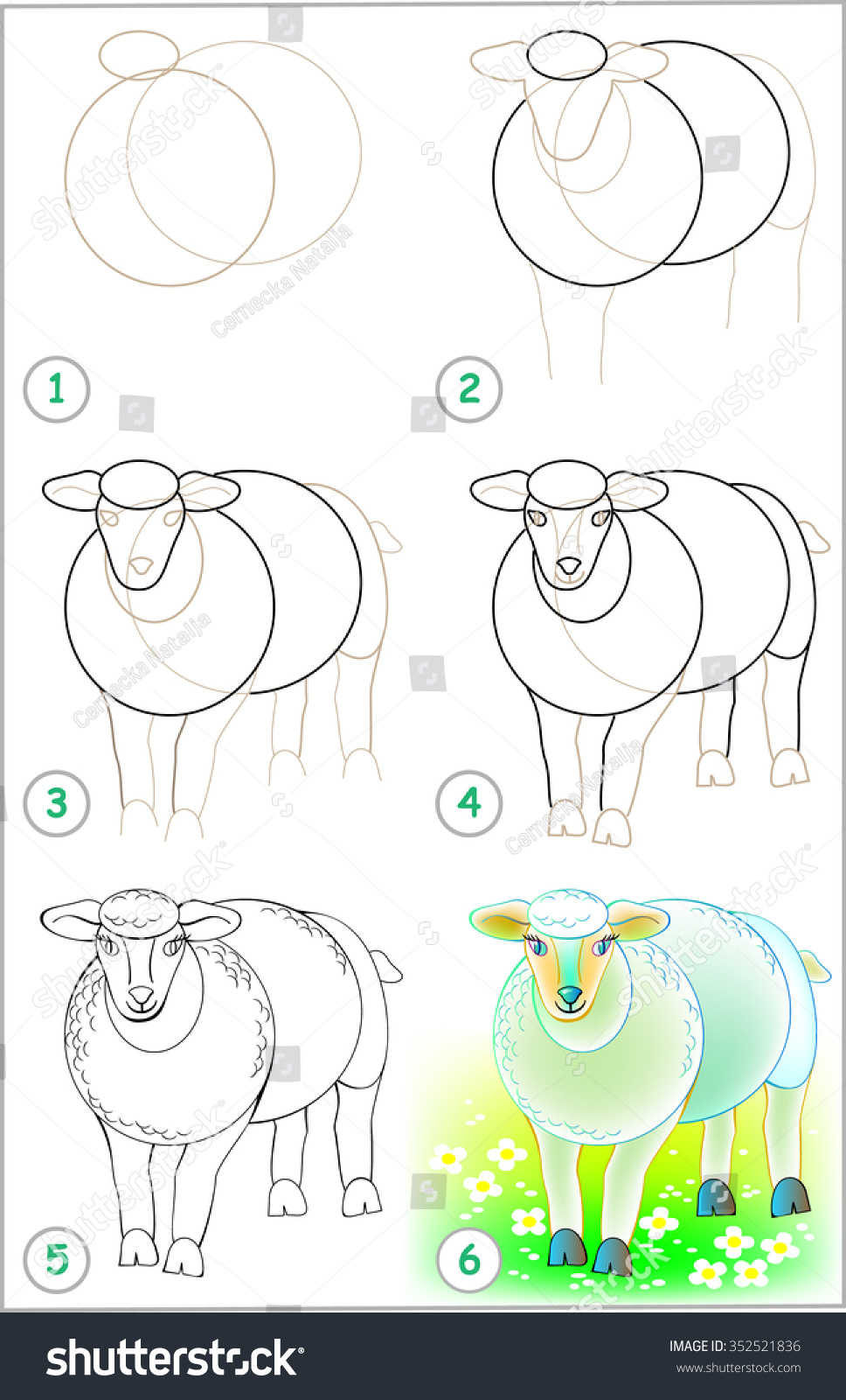 how to draw sheep for kid