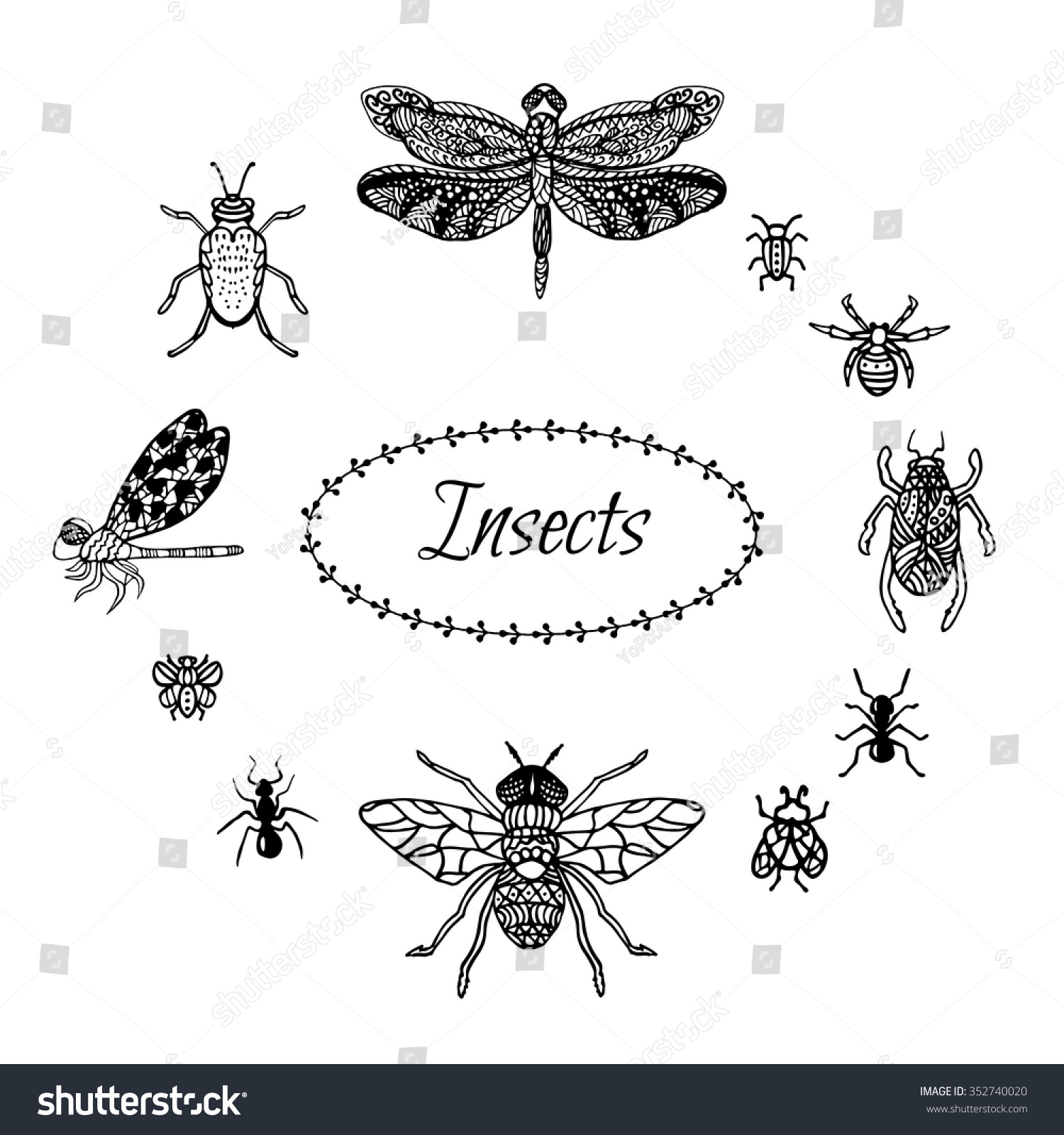 hand drawn insect set zentangle style stock vector 352740020