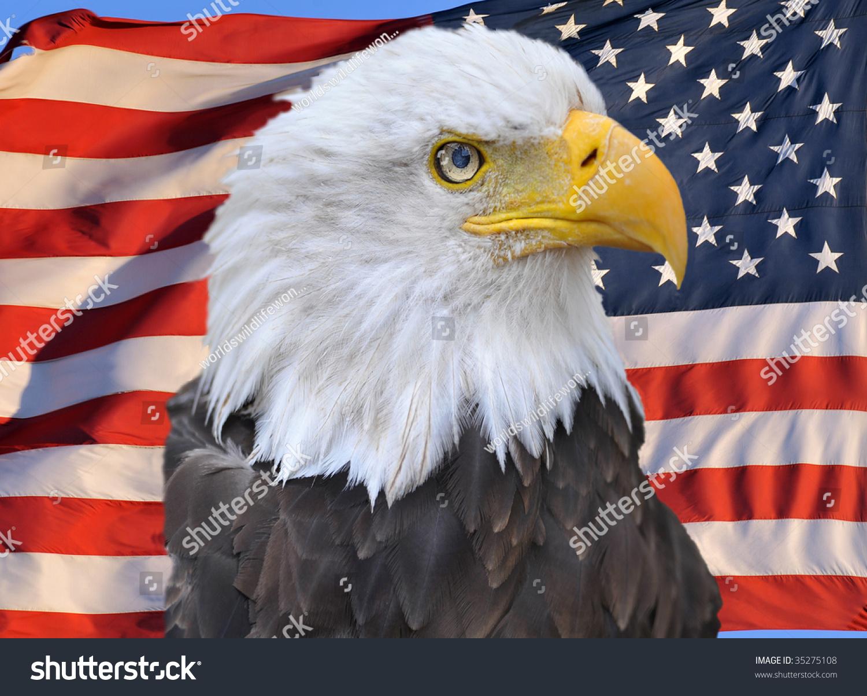 Bald Eagle Superimposed On United States Stock Photo Edit Now