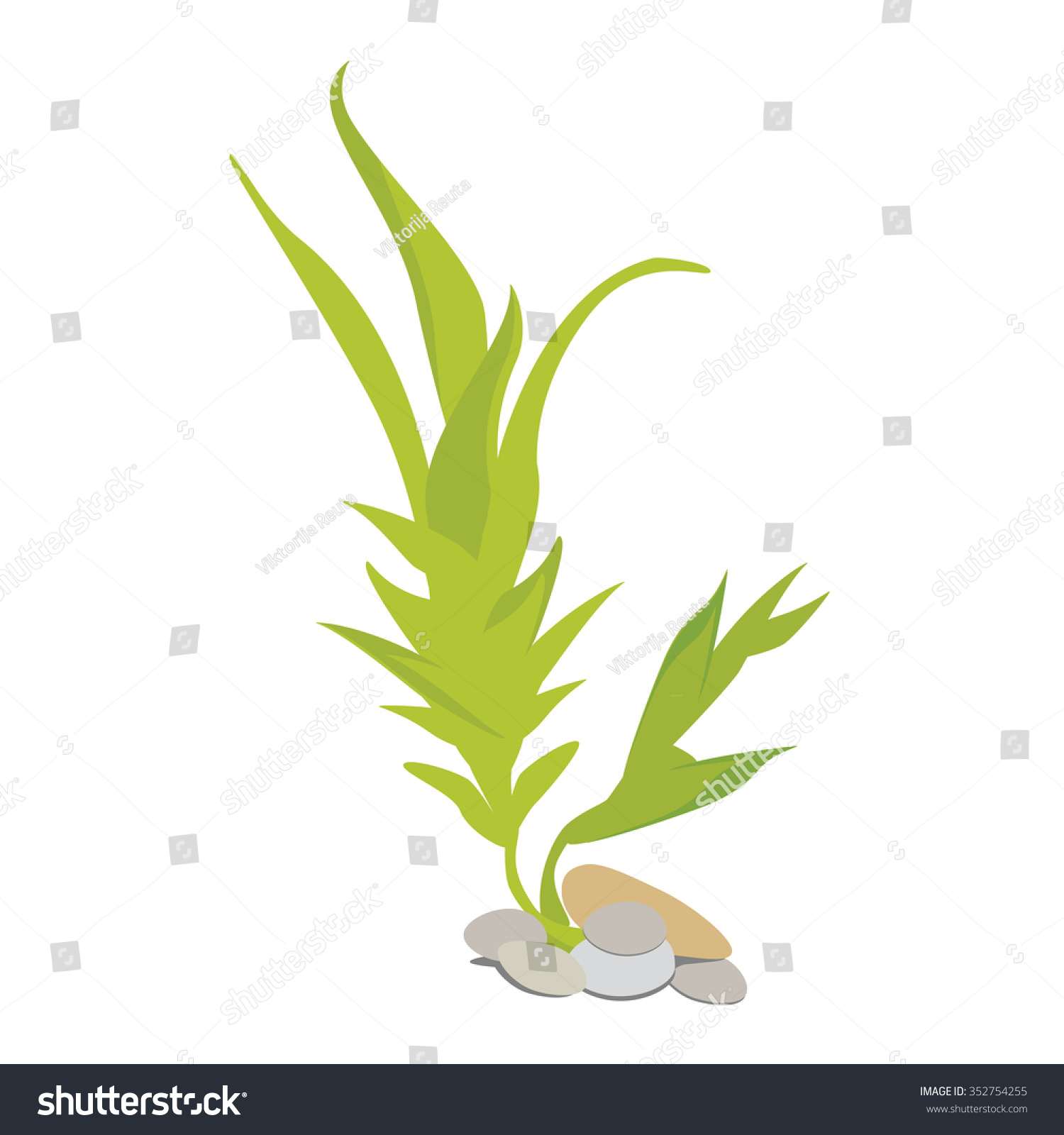 algae illustration vector illustration green algae with stones for aquarium 2503