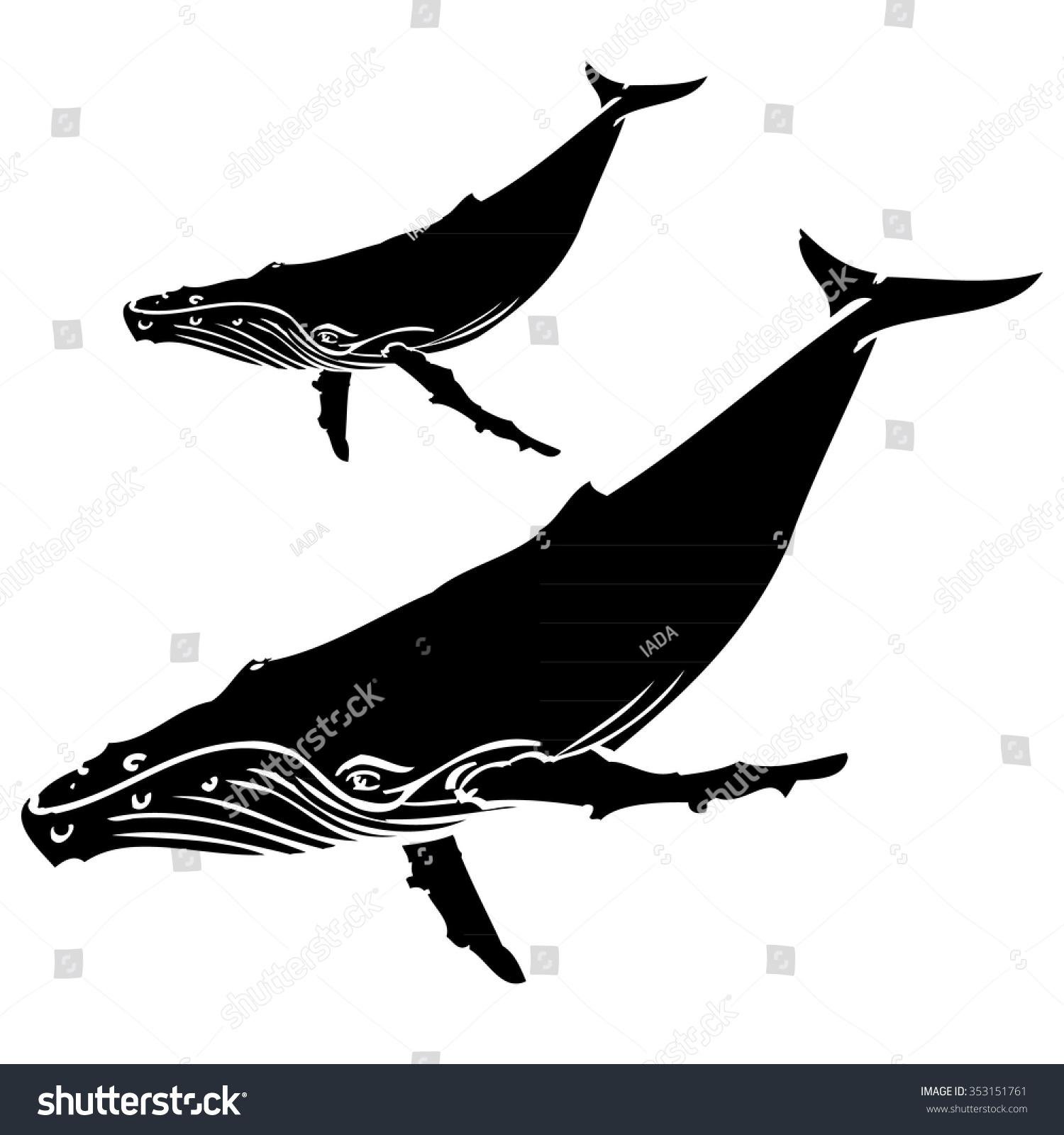 Humpback Whale - Illustration - 353151761 : Shutterstock
