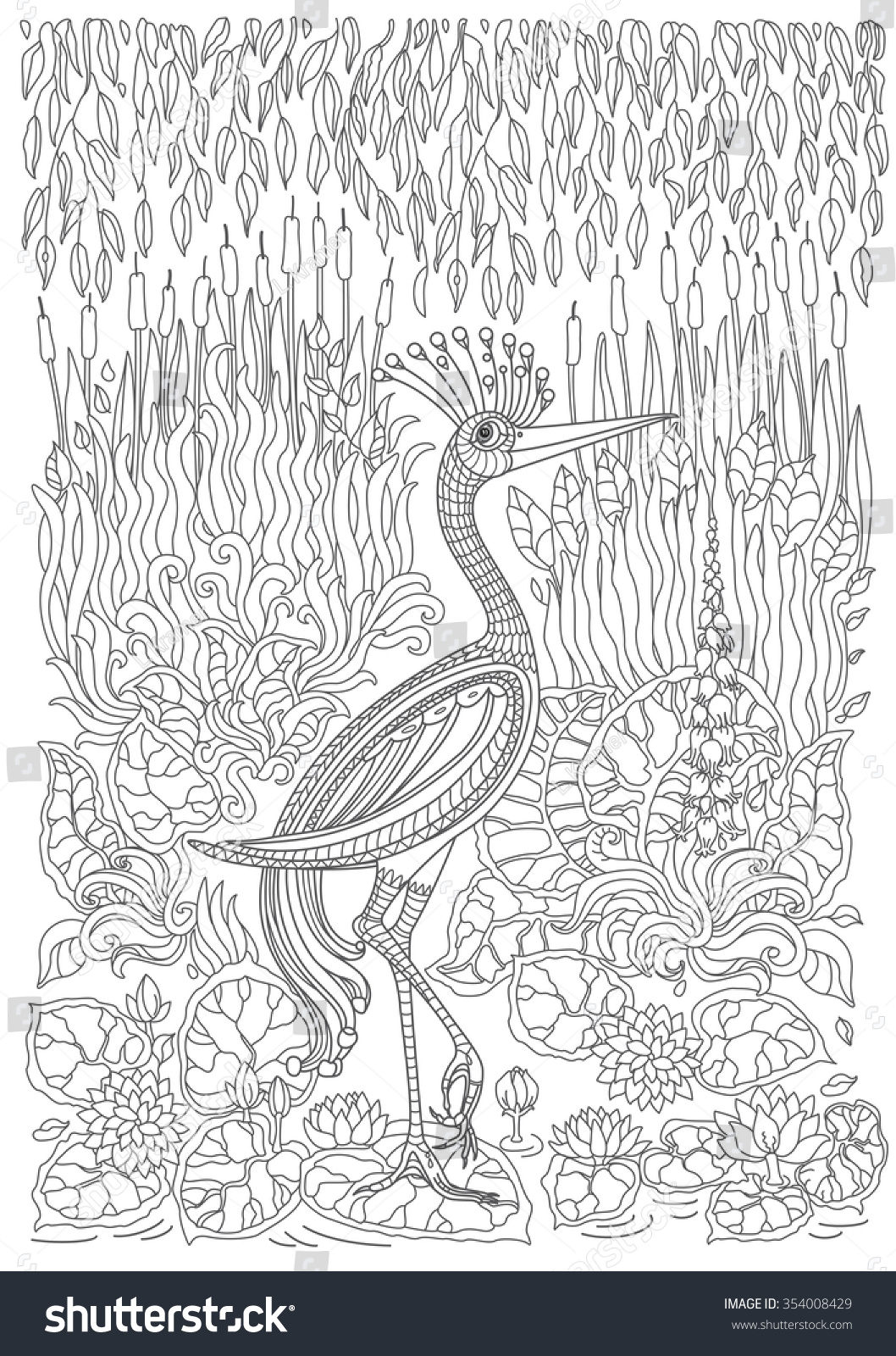 Contour Line Drawing Bird : Images about animaux à plumes on pinterest