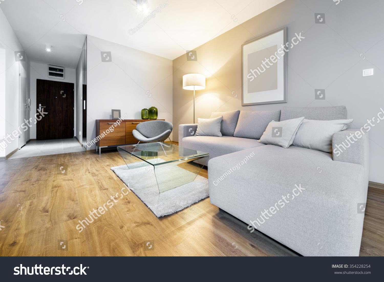 Modern Living Room Interior Design Apartment Stock Photo 354228254 ...