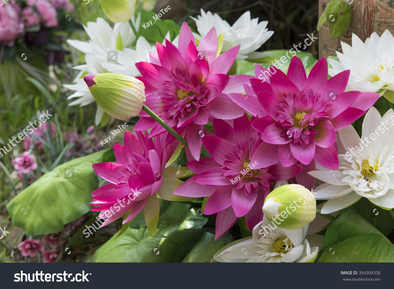 Bunch lotus flower garden stock photo edit now 354304358 bunch of lotus flower in the garden izmirmasajfo